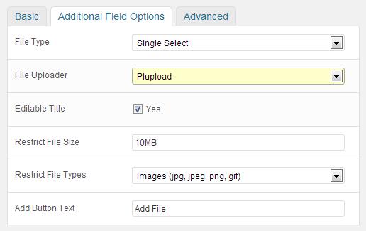 File Upload Field: plupload